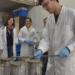Investigadores argentinos desarrollan morteros de cemento con agregados plásticos