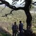 Talleres técnicos sobre el cálculo de beneficios de los bosques españoles al ecosistema
