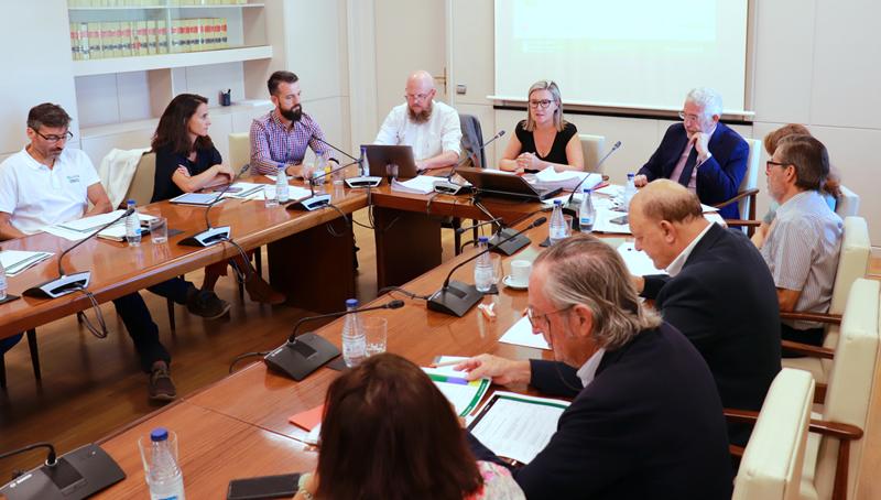 Desarrollo de la segunda reunión del Comité Técnico