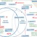 Conama analiza proyectos, barreras y posibles actuaciones para mejorar la economía circular del agua