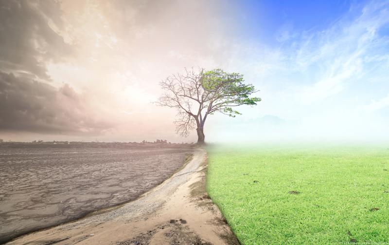 Clima seco y verde