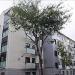 Zaragoza lanzará una nueva convocatoria de ayudas a la rehabilitación energética de viviendas privadas