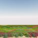 Cartagena instalará un jardín vertical en un muro, como inicio de su senda hacia una ciudad más verde