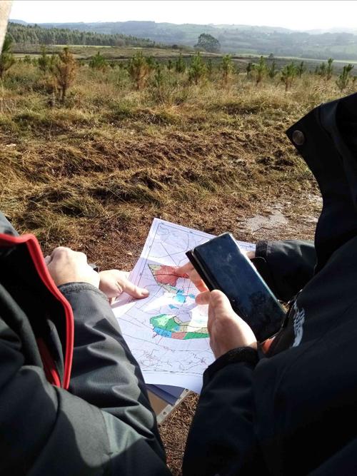 Técnicos forestales realizan mediciones para calcular la captura y almacenamiento de carbono en bosques gallegos.