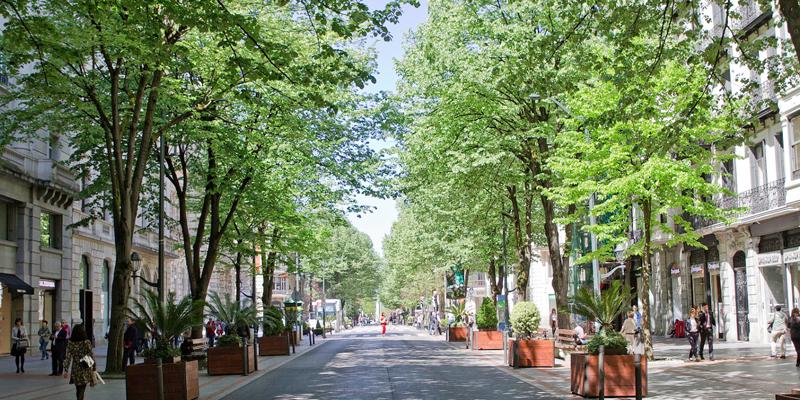 calle con edificios y árboles