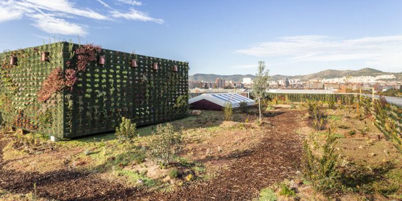 cubierta verde en barcelona