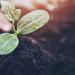 Sika se une a 'Together for Sustainability' para mejorar las prácticas sostenibles en la cadena de suministro