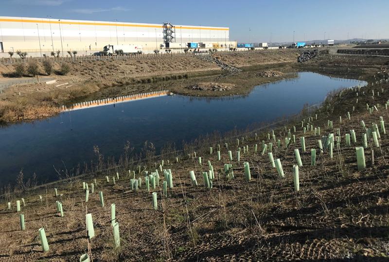 Balsa en PCI vegetada mediante redes orgánicas y biorollos de fibra de coco para controlar la erosión, retener sedimentos y humedad, y facilitar la revegetación.