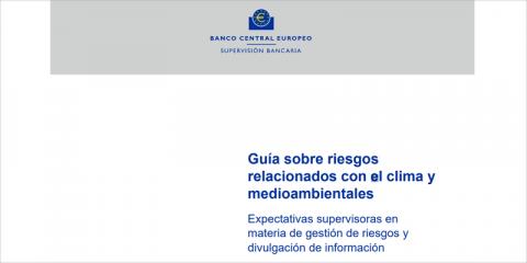 Consulta pública sobre la Guía de riesgos climáticos y medioambientales del BCE