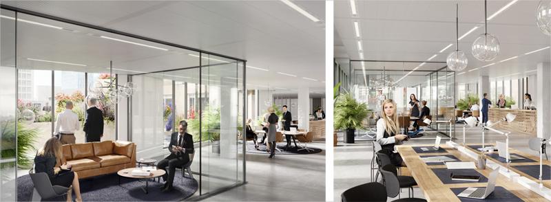 Las oficinas destacan por su espacio abierto e iluminación natural.