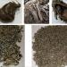 La UCA investiga el uso de residuos de la remolacha como sustituto del plástico
