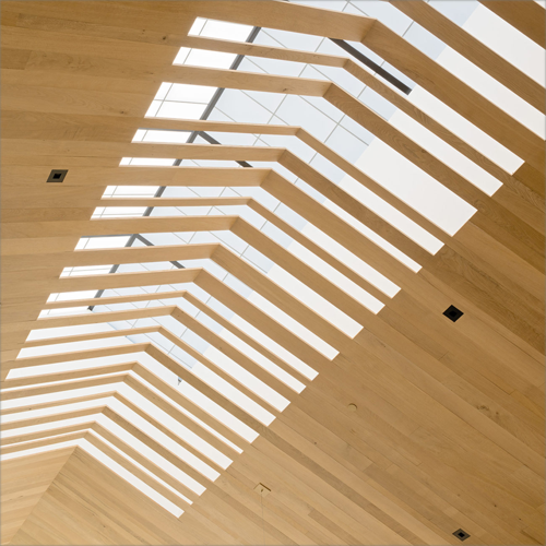 Aprovechamiento de la luz natural a través del techo de madera de la bodega.