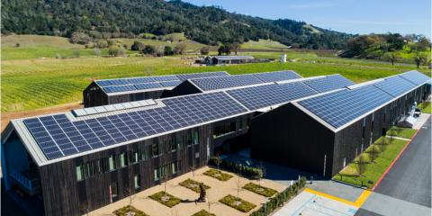 Innovación y sostenibilidad en las bodegas de vino ecológicas de Silver Oak en California