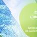 El Gobierno aprueba la Estrategia Española de Economía Circular