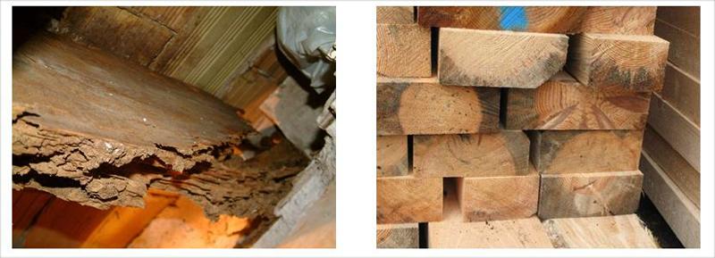 Efectos que producen humedad y el ataque de hongos sobre la madera. Fuente: AIDIMME.
