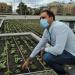 Cubierta verde como solución medioambiental en un centro de mayores valenciano