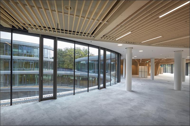 Tanto el diseño como el uso de materiales y colores dentro del edificio se inspiran directamente en el entorno natural que lo rodea.