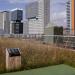 El Museo de Ciencias Naturales de Barcelona instala una cubierta con vegetación autóctona