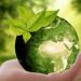MarketPlace CircularLabs, la plataforma virtual de economía circular del noroeste peninsular