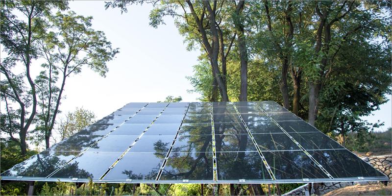 paneles solares creados por la UMA