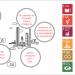 Schindler prioriza 6 ODS en su estrategia de sostenibilidad para reducir su impacto ambiental