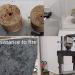 El proyecto IDEAL desarrolla un material de construcción con residuos de la minería