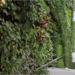 Inaugurado el nuevo centro cívico de Santander, un ECCN con jardín vertical interior de 600 m2
