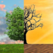 El Congreso da luz verde al proyecto de Ley de Cambio Climático y Transición Energética
