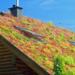 Láminas de drenaje de BMI de altas prestaciones para la instalación de cubiertas vegetales