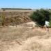Restauración ambiental de una cantera de LafargeHolcim en Toledo para potenciar la biodiversidad