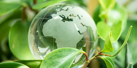 La Cámara de Comercio de España lanza ayudas para mejorar la sostenibilidad de las pymes