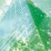 Los vidrios con certificación Cradle to Cradle de AGC revelan su compromiso medioambiental