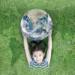 El Plan Estratégico de Salud y Medioambiente, que creará entornos saludables, sale a consulta pública