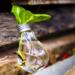 Programa de ayudas para proyectos de ecodiseño, economía circular y ecoinnovación en la industria vasca