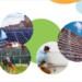 La CE propone una nueva Directiva de Eficiencia Energética para lograr los objetivos climáticos