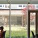 El vidrio Planibel Clearvision de AGC cuenta con nuevos espesores que optimizan la iluminación natural