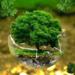 Aprobado el Real Decreto que regula el Fondo de Restauración Ecológica y Resiliencia con 198 millones