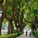 El Ayuntamiento de Huelva impulsa el primer Plan Municipal de Adaptación al Cambio Climático