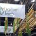 La fachada de madera y el voladizo industrializado, las innovaciones de Lignum Tech presentadas en Rebuild