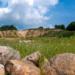 Quinta edición del concurso Quarry Life Award para promover la biodiversidad en las canteras