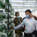La integración de microalgas en la arquitectura del edificio de ESMASA en Alcorcón permitirá reciclar el aire